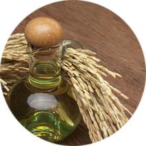 rice-oil
